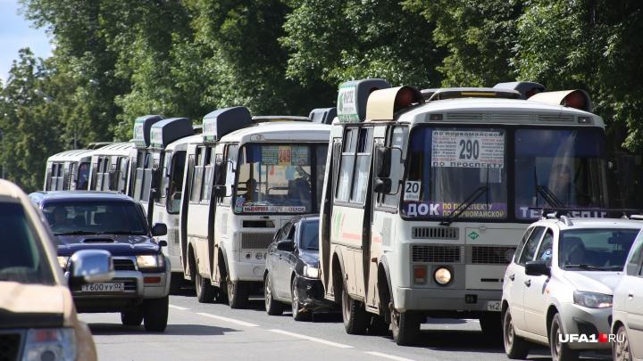 Стало известно, как будут ходить автобусы в День города в Уфе
