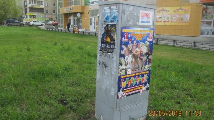 Екатеринбуржца оштрафовали на 2 тысячи рублей за цирковую афишу на распределительном щите