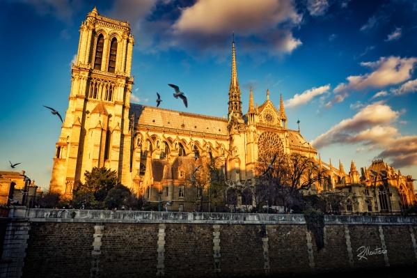 Собор Парижской Богоматери теперь надолго закроется для туристов