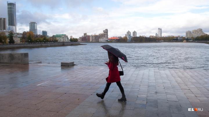 В Екатеринбург идут сильные ливни: МЧС выступило с экстренным предупреждением