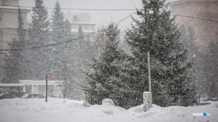 Объявлено предупреждение: к Новосибирску приближается стена мокрого снега