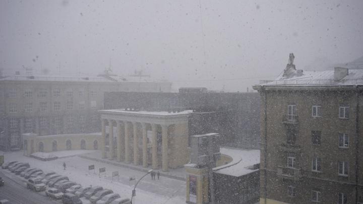 Весны не будет: снег в Новосибирске пошёл белой стеной