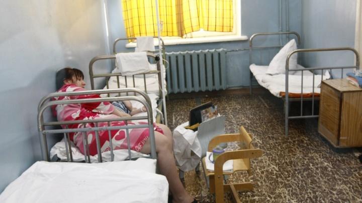 323 ребенка в Курганской области болеют микроспорозом