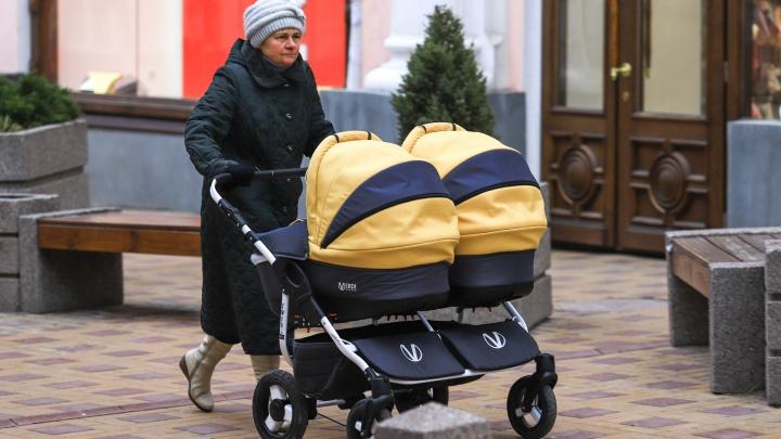 443 пары двойняшек: в 2018 году на Дону стало больше многодетных семей и людей, желающих сменить имя