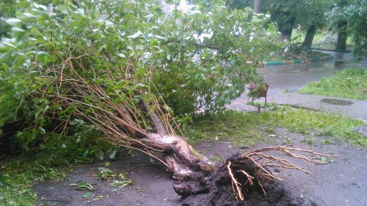 В 12 районах Зауралья из-за непогоды пропало электричество