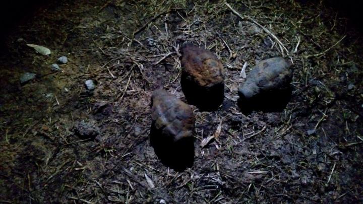 В Рыбинске на берегу реки нашли боеприпасы