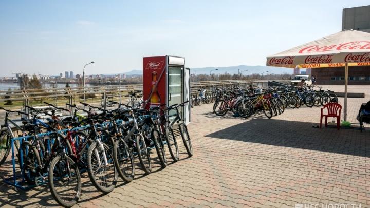 Стартовал сезон проката велосипедов на острове Татышев