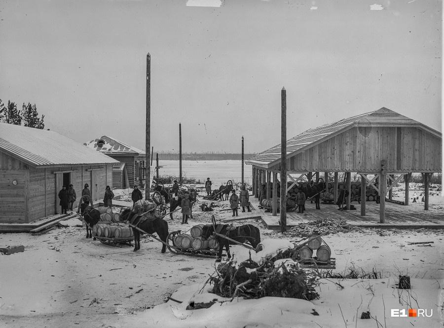 По одной из версий, название Большой Конный (или Большеконный) появилось из-за того, что работники Верх-Исетского завода любили выгуливать на его территории своих лошадей