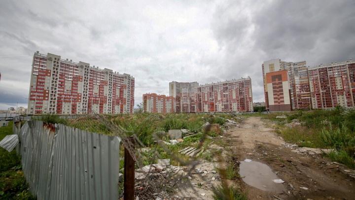 «Задача — сбор денег»: в районах Челябинска создадут структуру, которая будет следить за чистотой