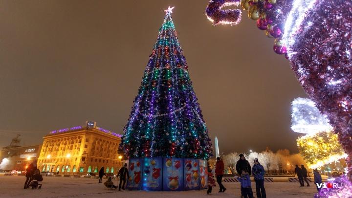 «Собирал по крупицам»: смотрим на нарядившийся к Новому году Волгоград с высоты