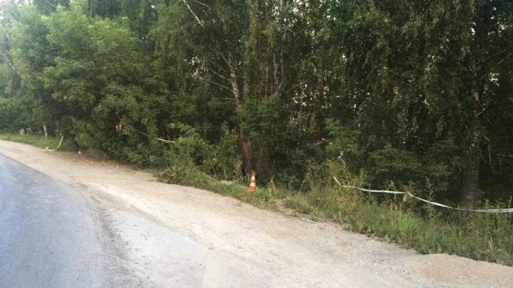Mitsubishi опрокинулся после удара о дерево возле ТЭЦ-5: погиб пассажир