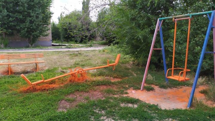 Оранжевые мамы оранжевым ребятам: в Волгограде вместо детской площадки покрасили траву