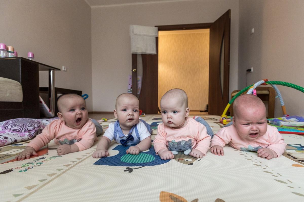 Гнездо аиста: фоторепортаж с семьей, где родилась четверня