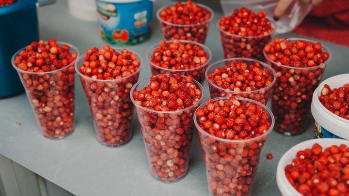 Почем земляничка и клубничка? Рассказываем, где и за сколько в Тюмени можно купить свежие ягоды