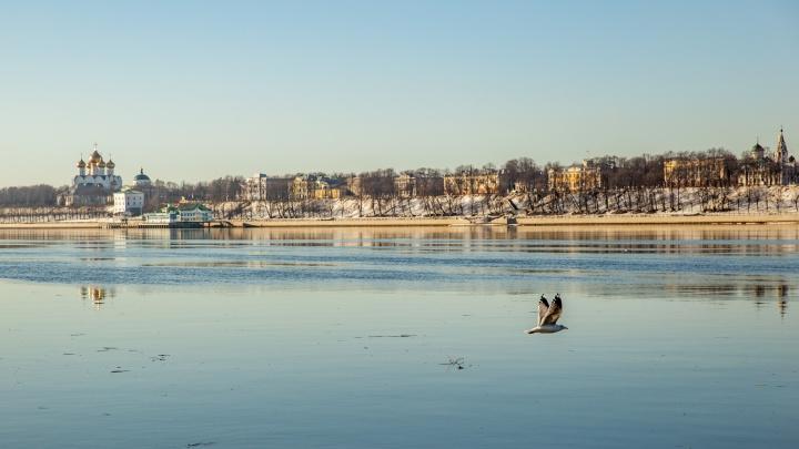 Время контрастов: синоптики рассказали, когда в Ярославле ждать лето