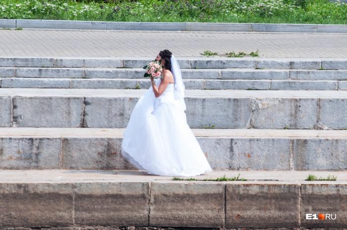 Из-за сбоя в базе подать заявление о заключении брака в этот вторник не получится