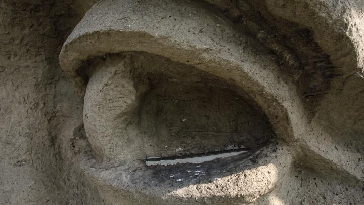 «На гвоздях»: металлические стержни в глазах «Родины-матери» отпугивают птиц