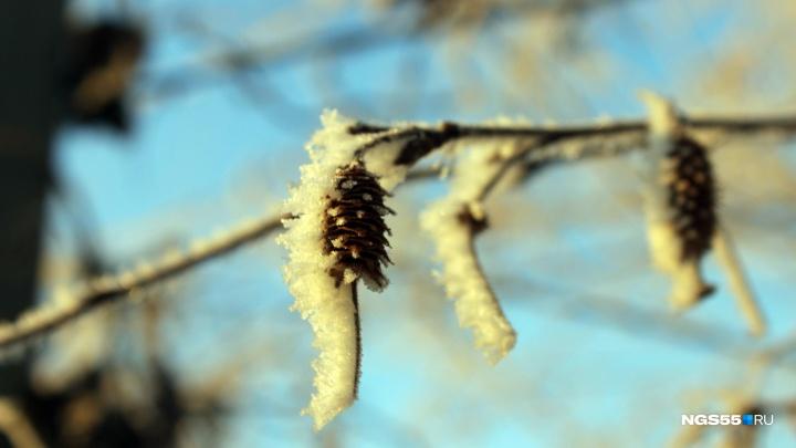 К началу рабочей недели в Омской области температура упадёт до нуля