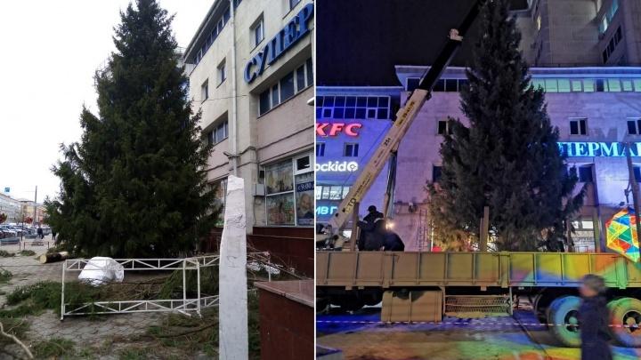 В Омске установили первую новогоднюю ёлку