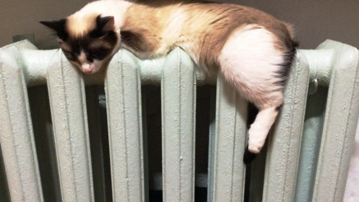 Александр Якоб: отопление в Екатеринбурге отключат на следующей неделе