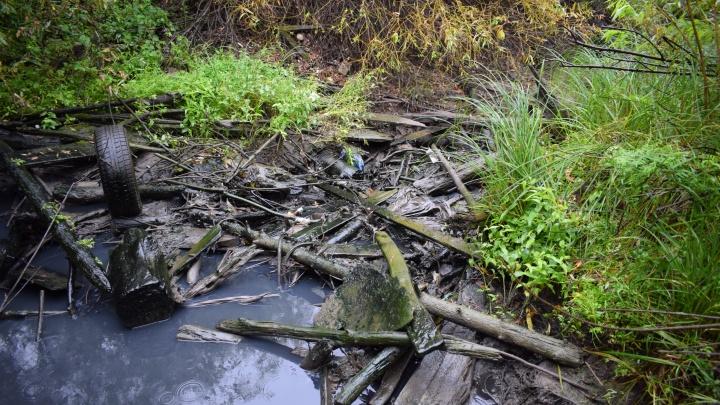 В районе Лесобазы в Туру сливают зловонные нечистоты