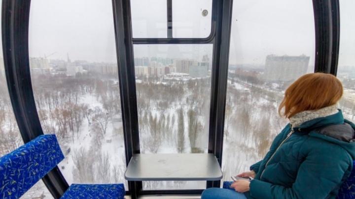 В парке Гагарина возобновили работу колеса обозрения