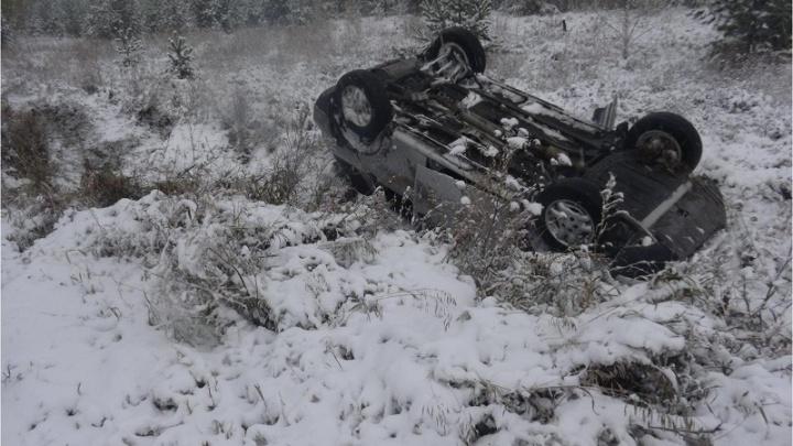 В Варгашинском и Кетовском районах в авариях пострадали 10 человек