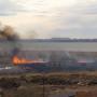 «Спасатели не знали, куда бежать»: природный пожар в Челябинске подобрался к полигону ОМОНа