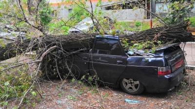 «Сделает кабриолет»: в Самаре дерево снесло крышу у «десятки»