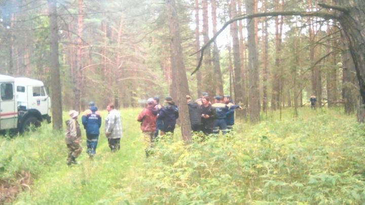В Курганской области нашли потерявшуюся в лесу пенсионерку