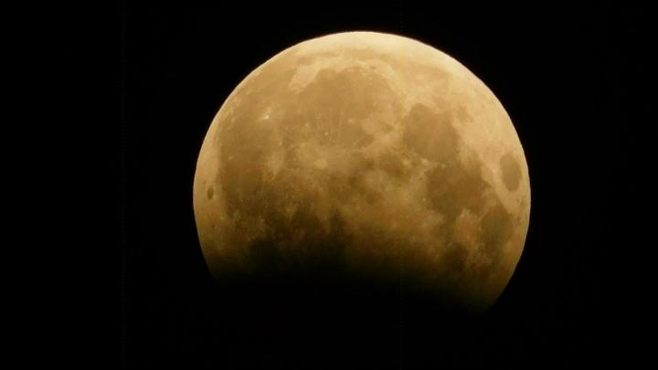 Охотники на Луну: в Новосибирске выбирают самое красивое фото кроваво-красного спутника