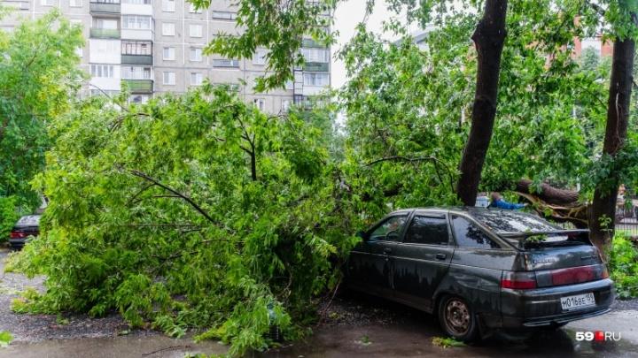 Сильные дожди, град и ветер: в Перми объявили штормовое предупреждение