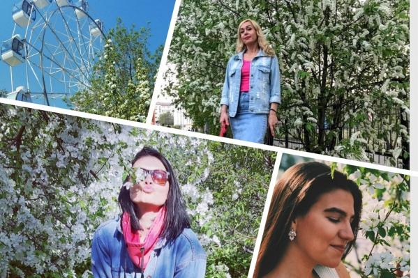 Цветущие деревья и цветы — лучший фон для красивых фотографий
