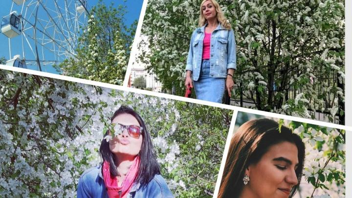 А у вас уже есть такое фото? 12 ярких кадров на фоне цветущей Тюмени