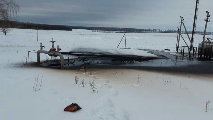 В Башкирии около деревни прорвало нефтепровод