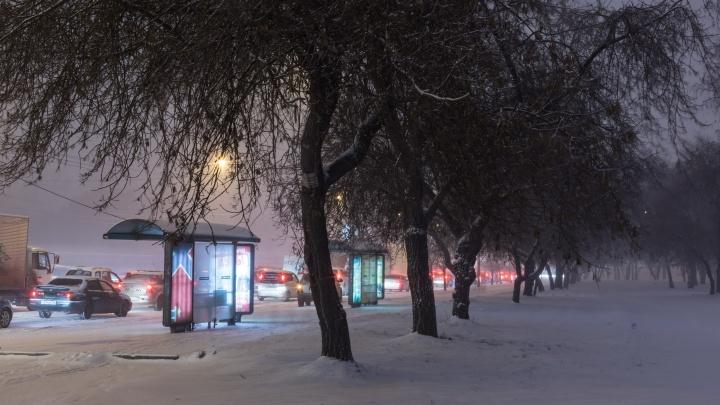 Трассы в Новосибирской области закрыли для автобусов из-за метели