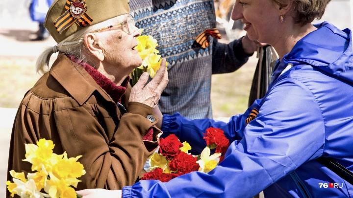За пять лет их стало меньше в три раза: сколько ветеранов ВОВ живёт в Ярославской области сейчас