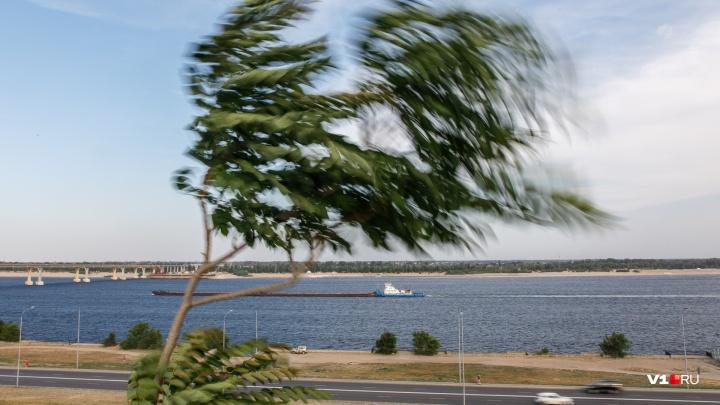 МЧС: на Волгоград надвигается гроза и штормовой ветер