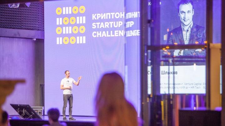 Начался конкурс для IT-стартаперов: в прошлом году финалистом стала команда из Новосибирска