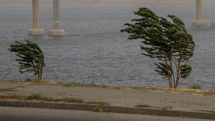 МЧС предупреждает: вечером 4 августа на Волгоградскую область обрушатся ливень и гроза