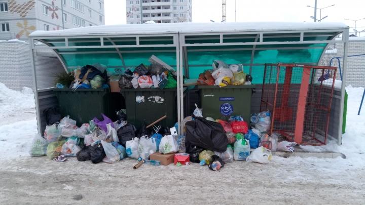 Тюменцам согласовали митинг против роста тарифов на вывоз мусора