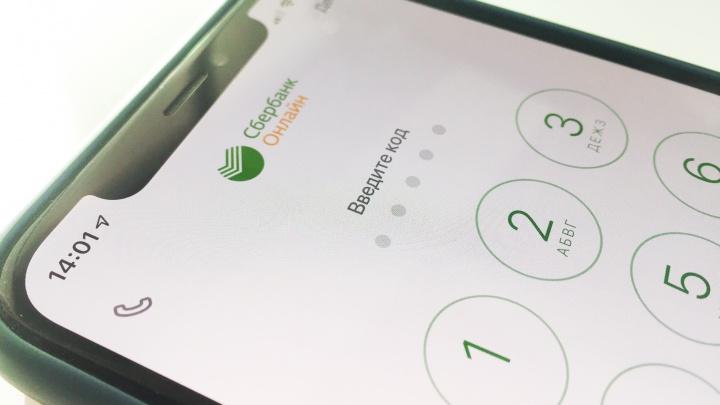 Зауралец украл через мобильное приложение с банковской карты знакомого-сироты более 300 тысяч рублей
