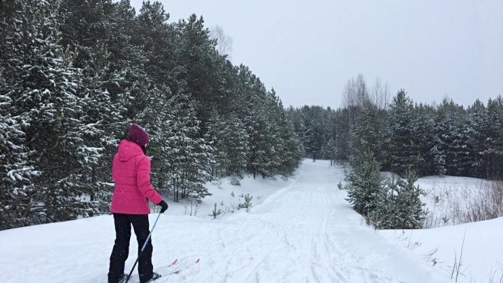 Репетировали Масленицу, гоняли на лыжах. 10 крутых кадров, как тюменцы провели снежное воскресенье