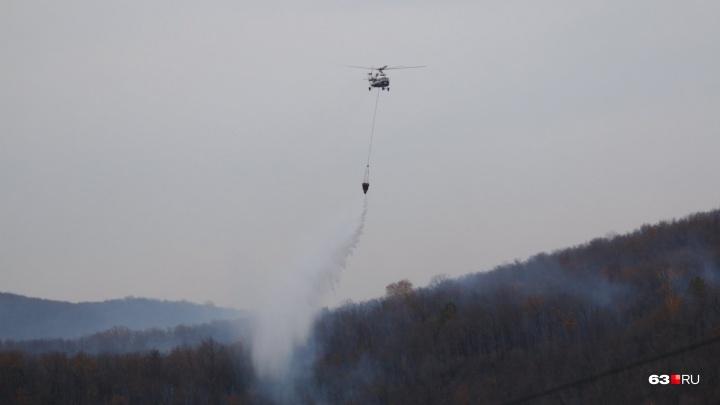 Объявили ликвидацию: какую территорию выжег крупный лесной пожар в Самарской области