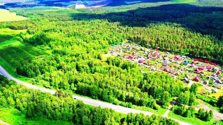 Красивая природа, чистый воздух, земля дешевле квартиры: в «Кургановском» начались продажи участков