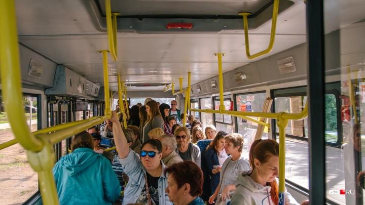 Жители «Кошелев-парка» просят пустить автобусы до рынка «Шапито»