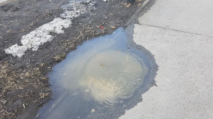 В центре Кургана из канализации бьет «родник»
