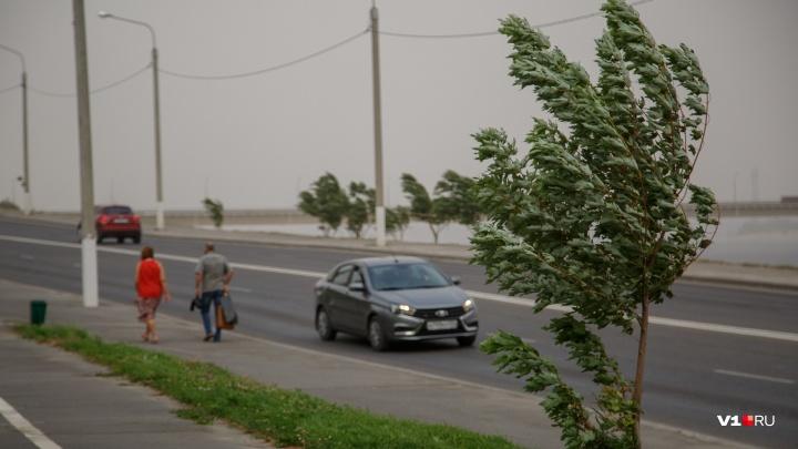 В Волгоградской области похолодает до+23 ºС при усилении ветра до 20 м/с