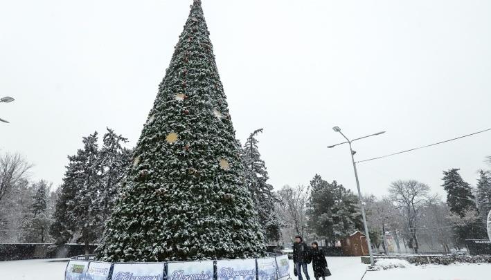 Ростов вошел в список городов с самыми высокими новогодними елками в стране