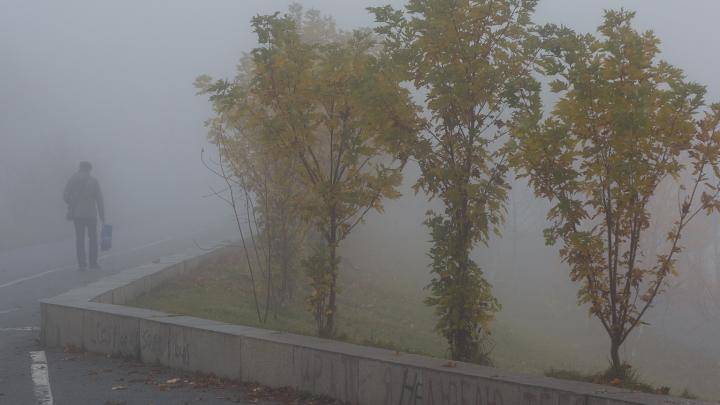 Волгоградскую область в начале недели атакуют ночные заморозки: прогноз погоды